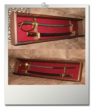 Enclosed Sword Display Case